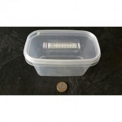 Micropropagation Box 540ml